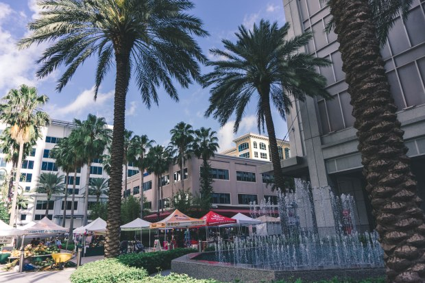 Farmers Market in Ft Lauderdale, FL