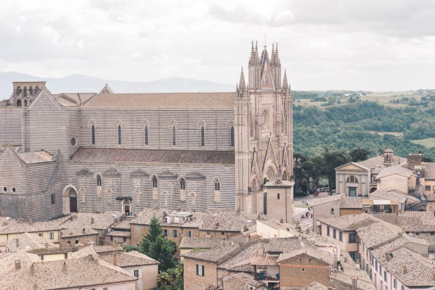 Cathedral of Orvieto.jpg