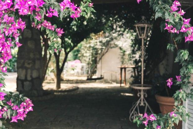 Annie - Ischia House